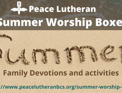 2020 Summer Worship Boxes